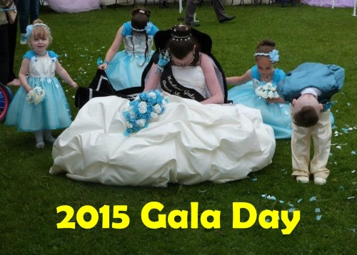 Link to 2015 Gala Day